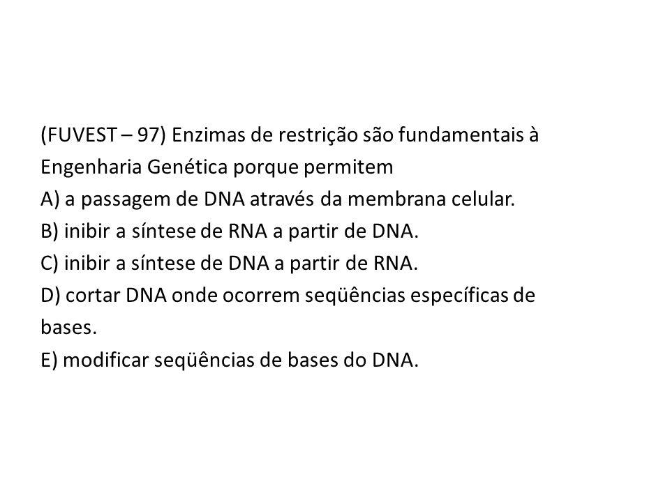 (FUVEST – 97) Enzimas de restrição são fundamentais à Engenharia Genética porque permitem A) a passagem de DNA através da membrana celular. B) inibir