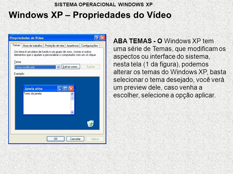 ABA TEMAS - O Windows XP tem uma série de Temas, que modificam os aspectos ou interface do sistema, nesta tela (1 da figura), podemos alterar os temas do Windows XP, basta selecionar o tema desejado, você verá um preview dele, caso venha a escolher, selecione a opção aplicar.