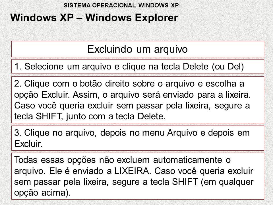 Excluindo um arquivo 1.Selecione um arquivo e clique na tecla Delete (ou Del) 2.