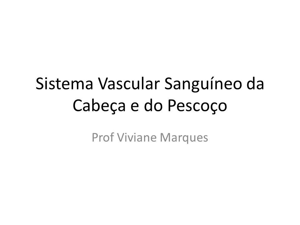 Sistema Vascular Sanguíneo da Cabeça e do Pescoço Prof Viviane Marques