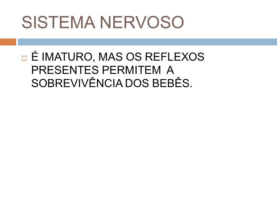 SISTEMA NERVOSO  É IMATURO, MAS OS REFLEXOS PRESENTES PERMITEM A SOBREVIVÊNCIA DOS BEBÊS.