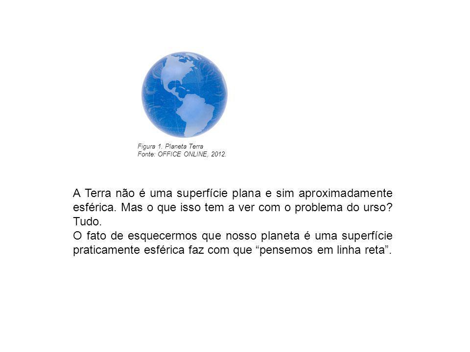 Figura 1. Planeta Terra Fonte: OFFICE ONLINE, 2012. A Terra não é uma superfície plana e sim aproximadamente esférica. Mas o que isso tem a ver com o