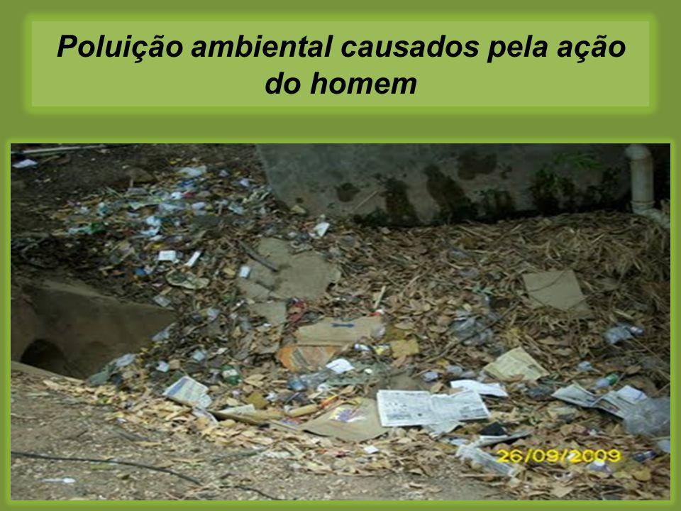 Poluição ambiental causados pela ação do homem