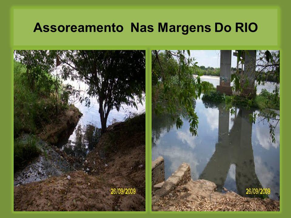 Assoreamento Nas Margens Do RIO