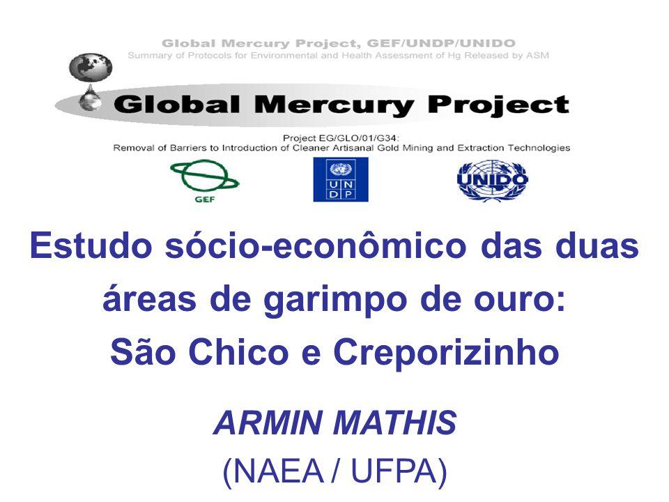 Estudo sócio-econômico das duas áreas de garimpo de ouro: São Chico e Creporizinho ARMIN MATHIS (NAEA / UFPA)