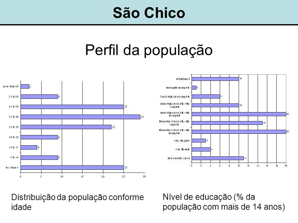 São Chico Perfil da população Nível de educação (% da população com mais de 14 anos) Distribuição da população conforme idade