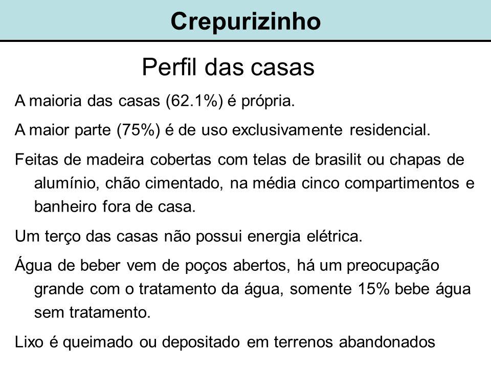 Perfil das casas A maioria das casas (62.1%) é própria.