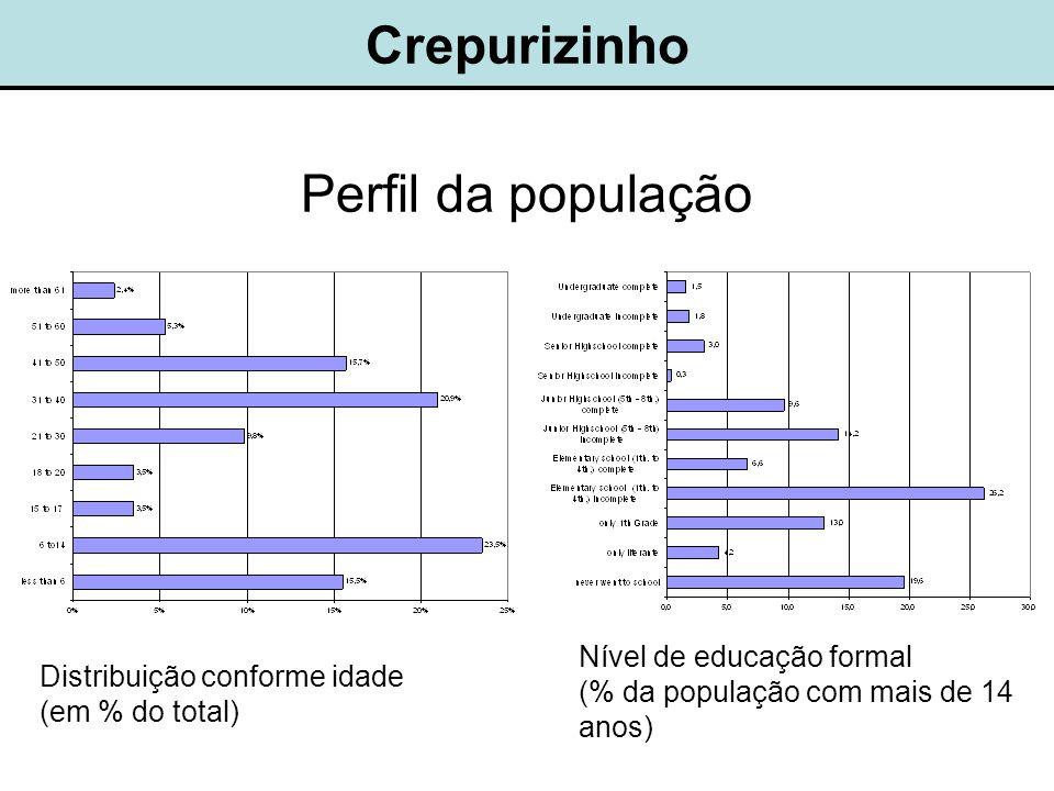 Crepurizinho Nível de educação formal (% da população com mais de 14 anos) Distribuição conforme idade (em % do total) Perfil da população