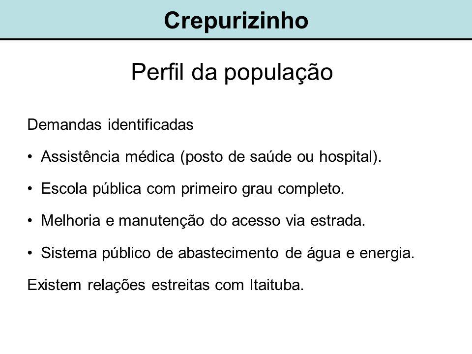 Crepurizinho Demandas identificadas •Assistência médica (posto de saúde ou hospital).