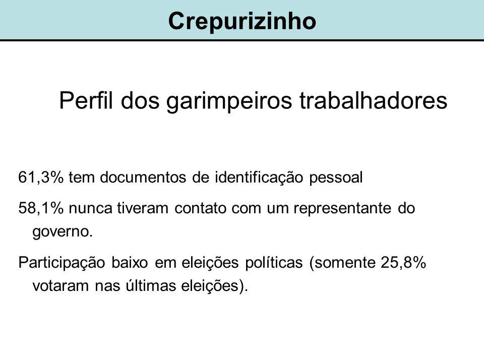 Crepurizinho Perfil dos garimpeiros trabalhadores 61,3% tem documentos de identificação pessoal 58,1% nunca tiveram contato com um representante do governo.