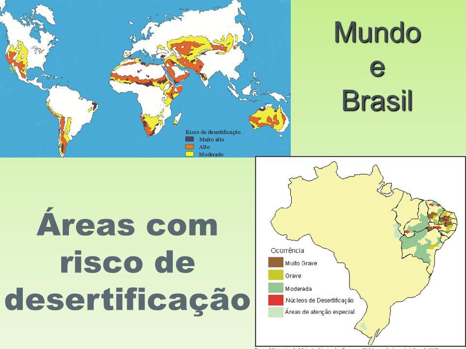 Mundo e Brasil Áreas com risco de desertificação