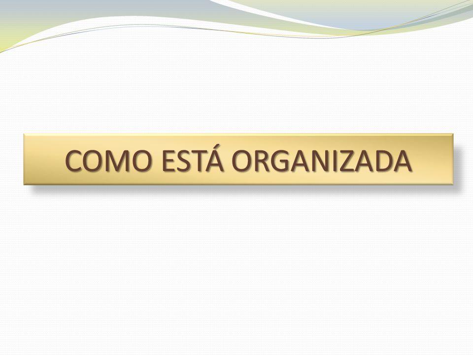 Organização Aplicação Pistas de Ação