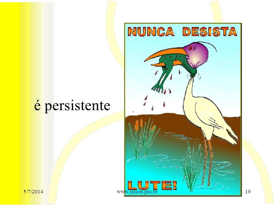 é persistente 5/7/201419www.nilson.pro.br