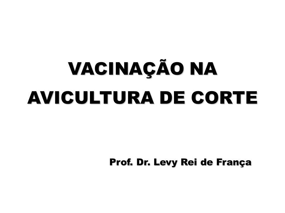 VACINAÇÃO NA AVICULTURA DE CORTE Prof. Dr. Levy Rei de França