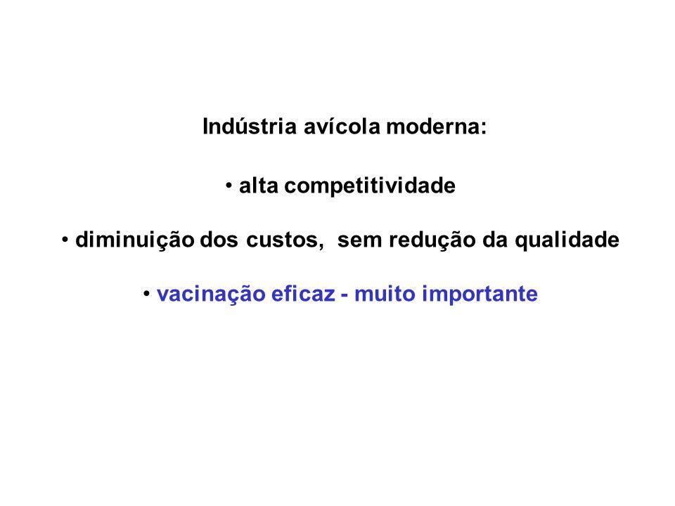 Indústria avícola moderna: • alta competitividade • diminuição dos custos, sem redução da qualidade • vacinação eficaz - muito importante