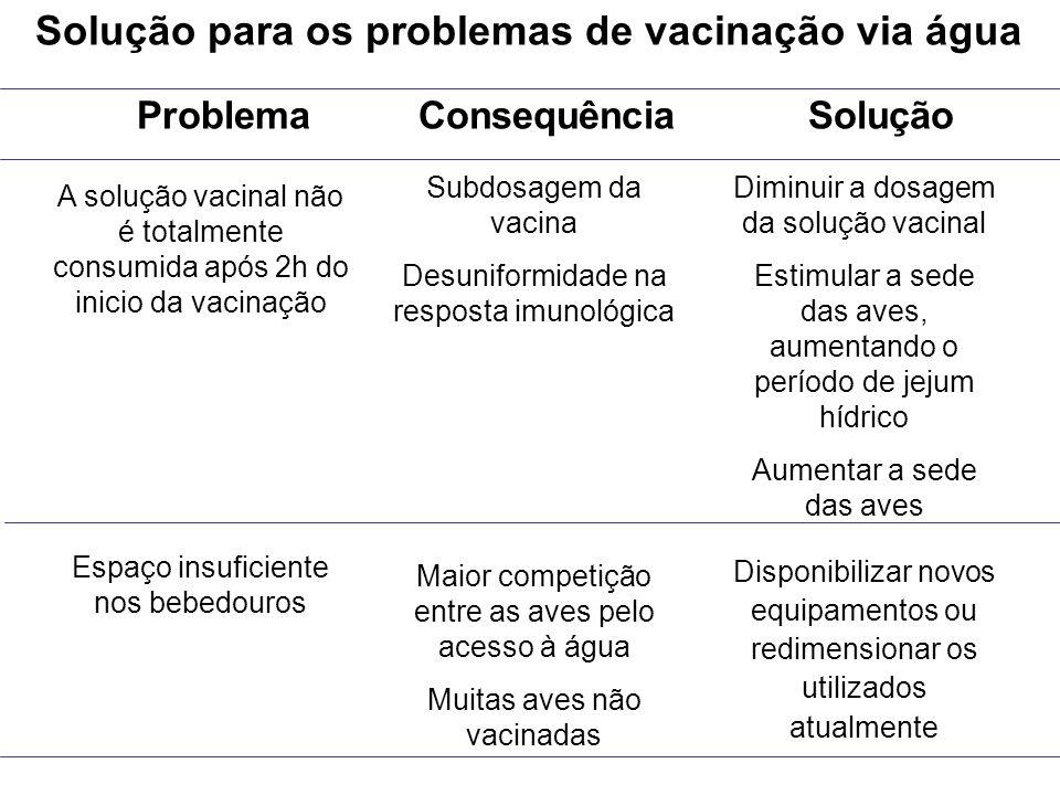 Solução para os problemas de vacinação via água Problema Consequência Solução A solução vacinal não é totalmente consumida após 2h do inicio da vacina