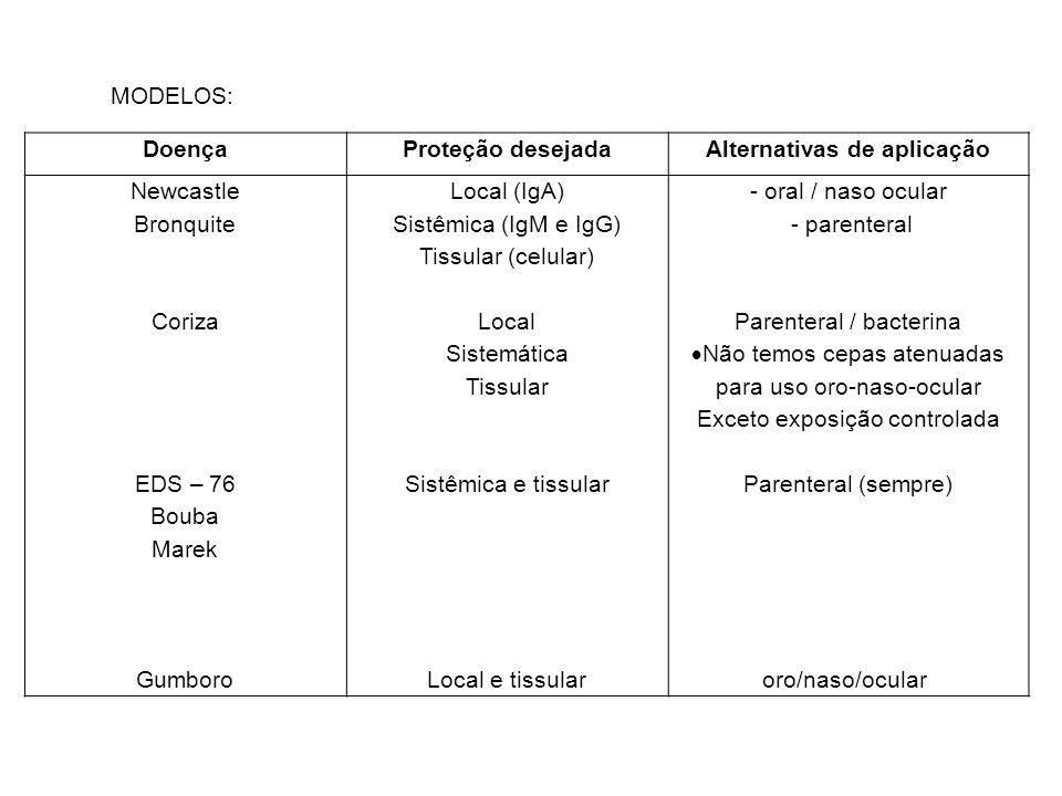 DoençaProteção desejadaAlternativas de aplicação Newcastle Bronquite Coriza EDS – 76 Bouba Marek Gumboro Local (IgA) Sistêmica (IgM e IgG) Tissular (c