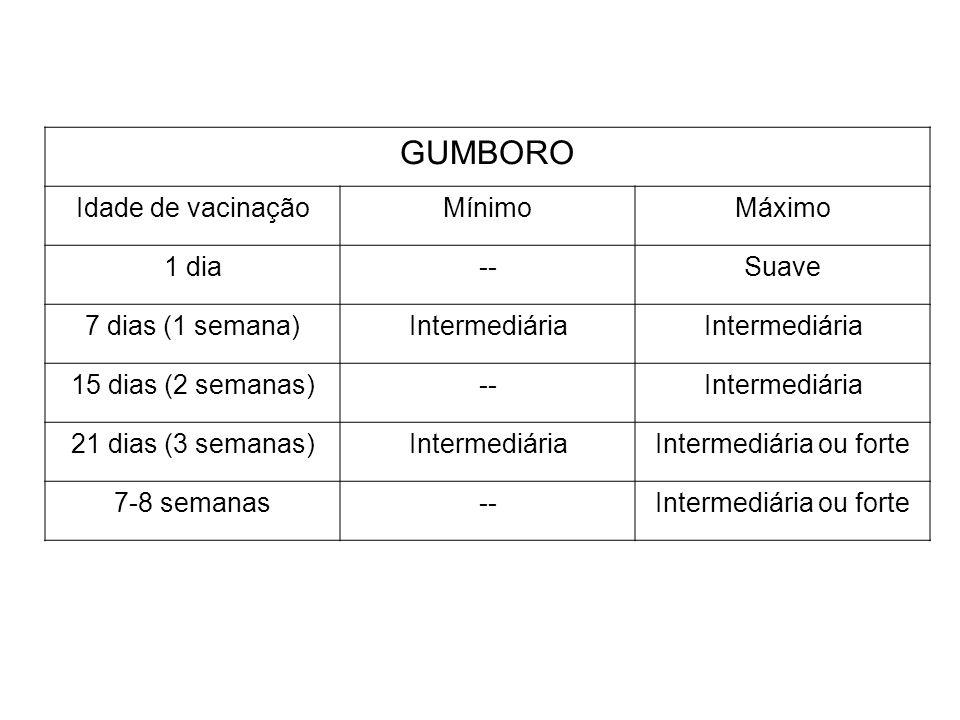 GUMBORO Idade de vacinaçãoMínimoMáximo 1 dia--Suave 7 dias (1 semana)Intermediária 15 dias (2 semanas)--Intermediária 21 dias (3 semanas)Intermediária