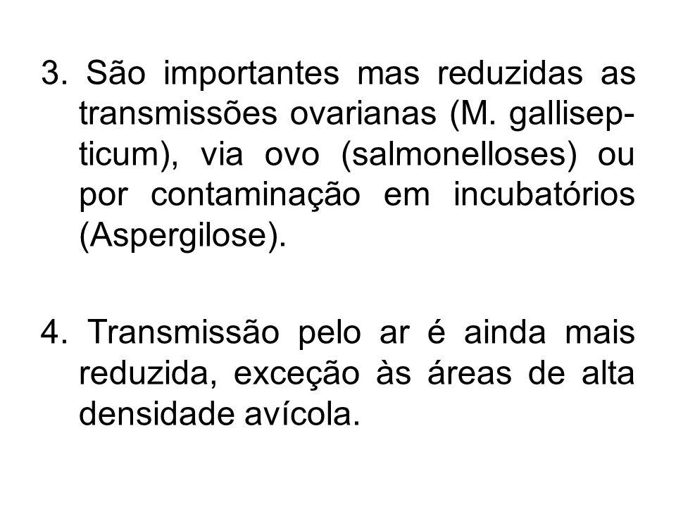 3. São importantes mas reduzidas as transmissões ovarianas (M. gallisep- ticum), via ovo (salmonelloses) ou por contaminação em incubatórios (Aspergil