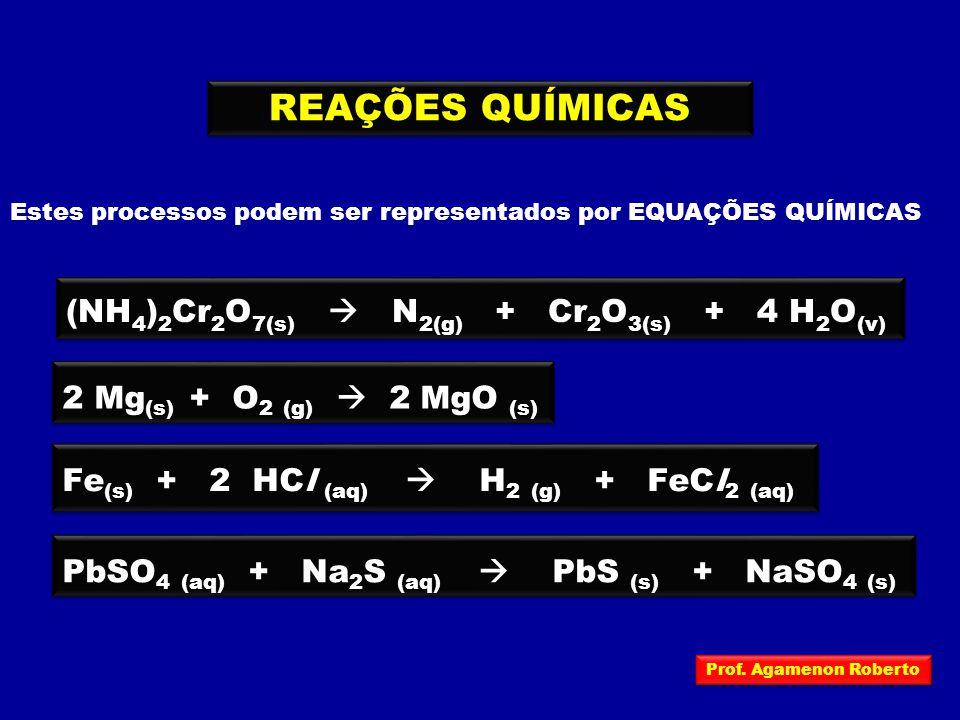 REAÇÕES QUÍMICAS Estes processos podem ser representados por EQUAÇÕES QUÍMICAS (NH 4 ) 2 Cr 2 O 7(s)  N 2(g) + Cr 2 O 3(s) + 4 H 2 O (v) 2 Mg (s) + O