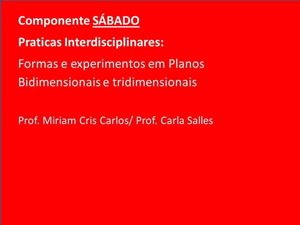 Componente SÁBADO Praticas Interdisciplinares: Formas e experimentos em Planos Bidimensionais e tridimensionais Prof. Miriam Cris Carlos/ Prof. Carla