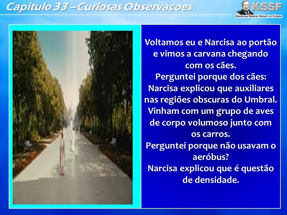 Capítulo 33 –Curiosas Observacoes Voltamos eu e Narcisa ao portão e vimos a carvana chegando com os cães. Perguntei porque dos cães: Narcisa explicou
