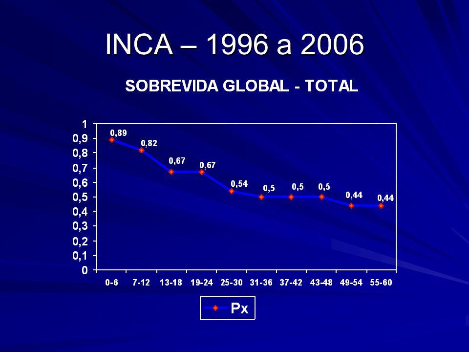 INCA – 1996 a 2006