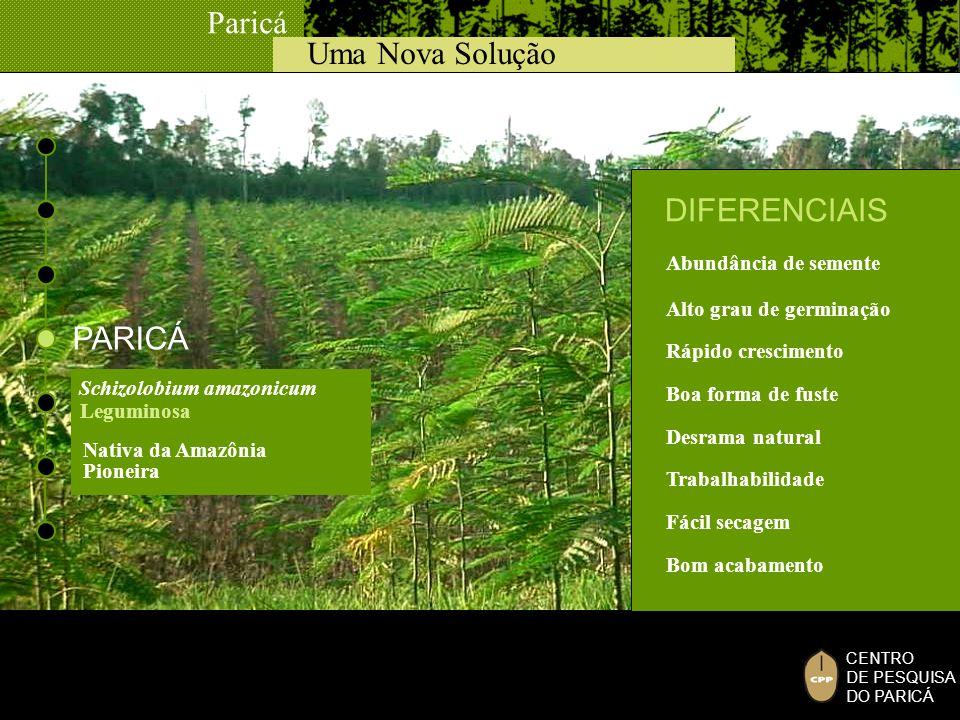 Uma Nova Solução Paricá CENTRO DE PESQUISA DO PARICÁ PARICÁ Schizolobium amazonicum Leguminosa Rápido crescimento Abundância de semente Alto grau de g