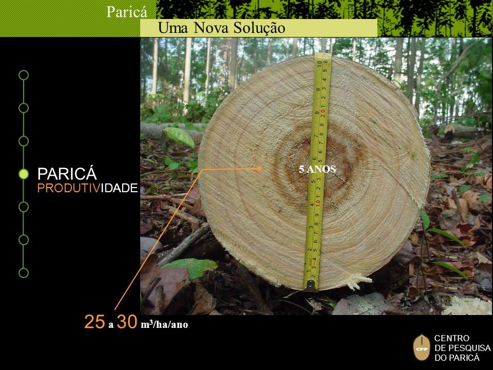 Uma Nova Solução Paricá CENTRO DE PESQUISA DO PARICÁ PRODUTIVIDADE 5 ANOS 25 a 30 m 3 /ha/ano PARICÁ
