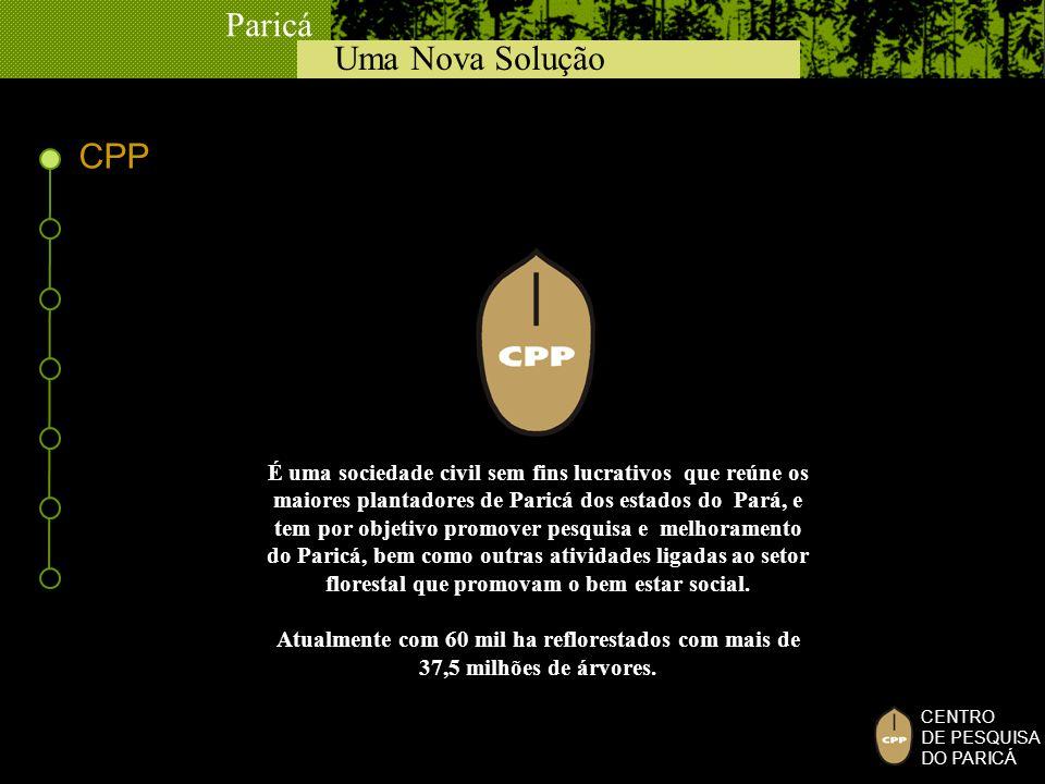 Uma Nova Solução Paricá CENTRO DE PESQUISA DO PARICÁ CPP É uma sociedade civil sem fins lucrativos que reúne os maiores plantadores de Paricá dos esta
