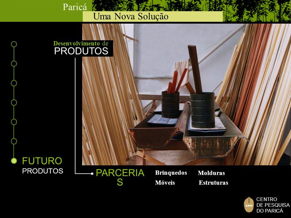 Uma Nova Solução Paricá CENTRO DE PESQUISA DO PARICÁ FUTURO PRODUTOS Brinquedos Molduras Móveis Estruturas PARCERIA S Desenvolvimento de PRODUTOS
