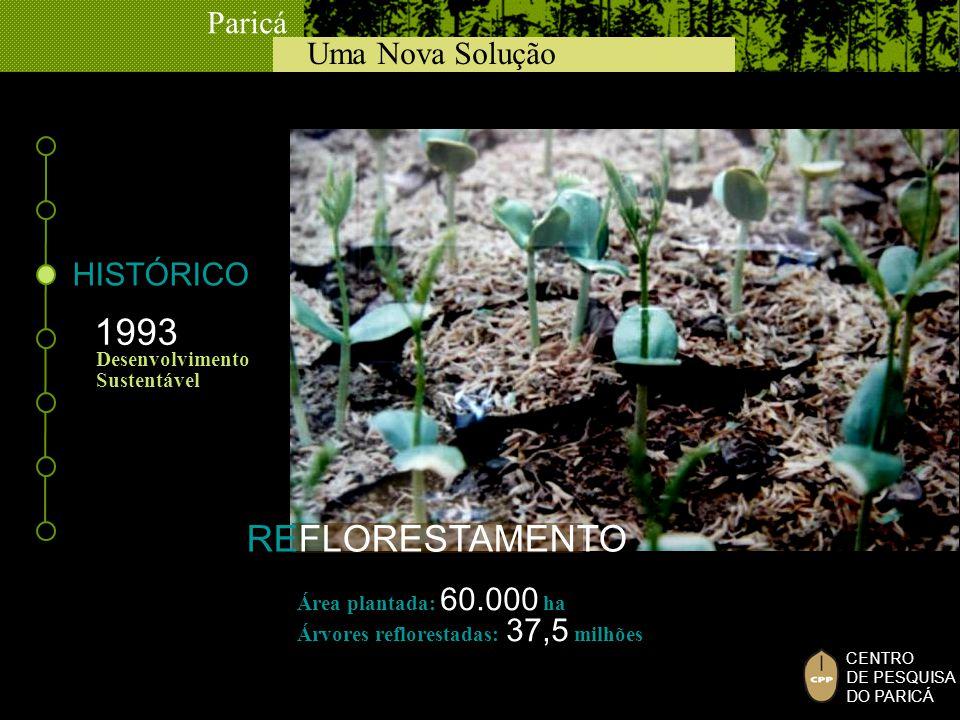 Uma Nova Solução Paricá CENTRO DE PESQUISA DO PARICÁ REFLORESTAMENTO 1993 Desenvolvimento Sustentável HISTÓRICO Área plantada: 60.000 ha Árvores reflo