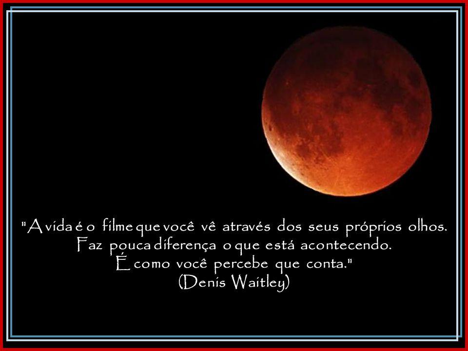 Publicada em 01/08/2008 no 'Correio Popular' - Campinas - SP Cecílio Elias Netto (escritor e jornalista)