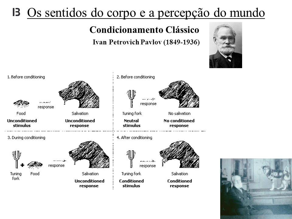 Ivan Petrovich Pavlov (1849-1936) Condicionamento Clássico Os sentidos do corpo e a percepção do mundo
