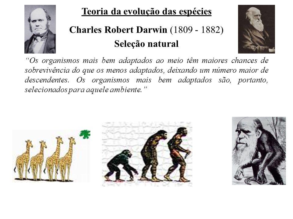 Charles Robert Darwin (1809 - 1882) Teoria da evolução das espécies Seleção natural Os organismos mais bem adaptados ao meio têm maiores chances de sobrevivência do que os menos adaptados, deixando um número maior de descendentes.