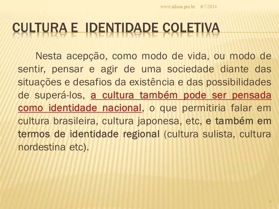 Nesta acepção, como modo de vida, ou modo de sentir, pensar e agir de uma sociedade diante das situações e desafios da existência e das possibilidades de superá-los, a cultura também pode ser pensada como identidade nacional, o que permitiria falar em cultura brasileira, cultura japonesa, etc, e também em termos de identidade regional (cultura sulista, cultura nordestina etc).a cultura também pode ser pensada como identidade nacional 6/7/2014 4 www.nilson.pro.br