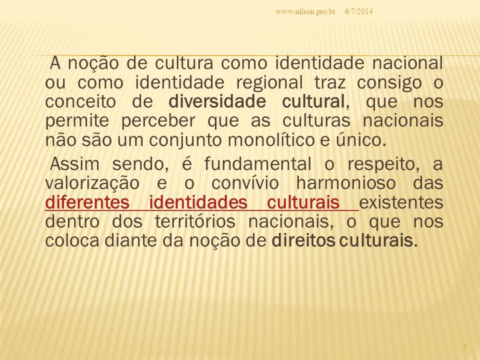 A noção de cultura como identidade nacional ou como identidade regional traz consigo o conceito de diversidade cultural, que nos permite perceber que as culturas nacionais não são um conjunto monolítico e único.