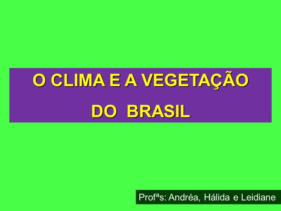 O CLIMA E A VEGETAÇÃO DO BRASIL Profªs: Andréa, Hálida e Leidiane