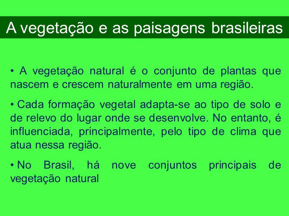 A vegetação e as paisagens brasileiras • A vegetação natural é o conjunto de plantas que nascem e crescem naturalmente em uma região. • Cada formação