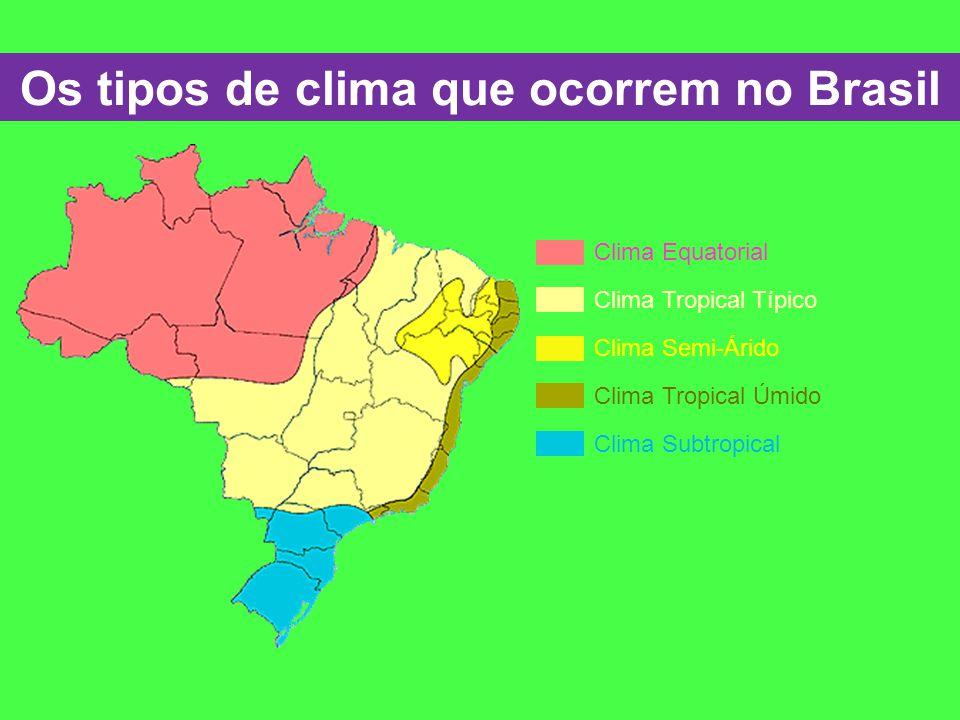 Os tipos de clima que ocorrem no Brasil Clima Equatorial Clima Tropical Típico Clima Semi-Árido Clima Tropical Úmido Clima Subtropical