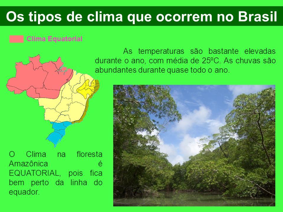 Clima Equatorial Os tipos de clima que ocorrem no Brasil As temperaturas são bastante elevadas durante o ano, com média de 25ºC. As chuvas são abundan