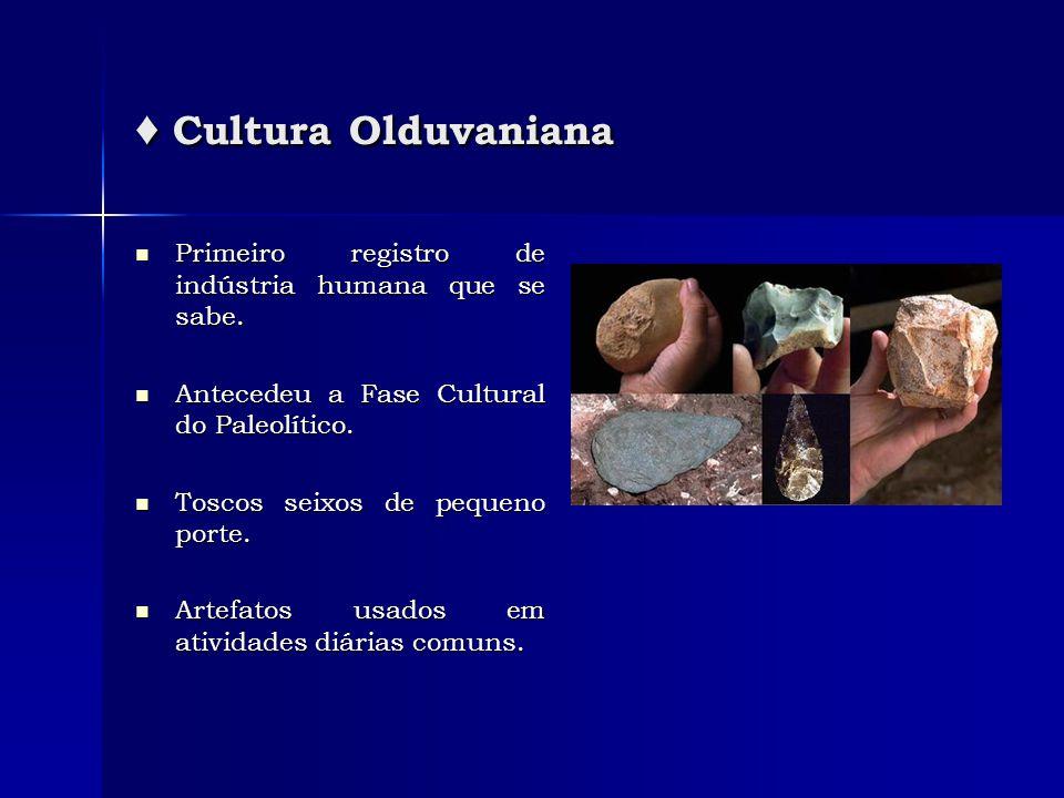 ♦ Cultura Olduvaniana  Primeiro registro de indústria humana que se sabe.  Antecedeu a Fase Cultural do Paleolítico.  Toscos seixos de pequeno port