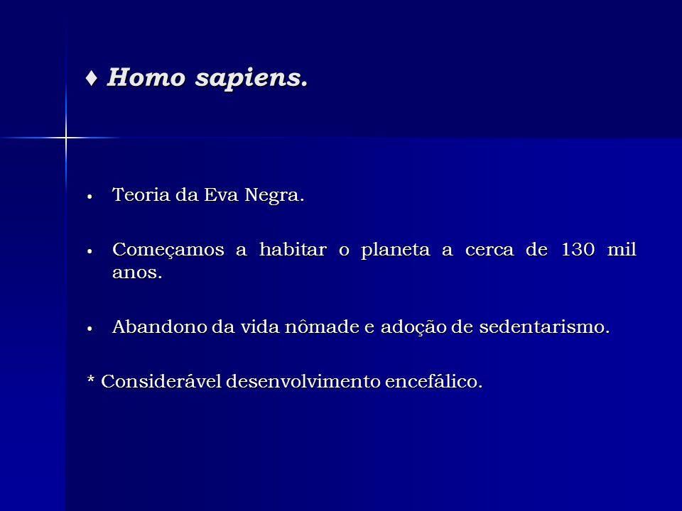 ♦ Homo sapiens. • Teoria da Eva Negra. • Começamos a habitar o planeta a cerca de 130 mil anos. • Abandono da vida nômade e adoção de sedentarismo. *