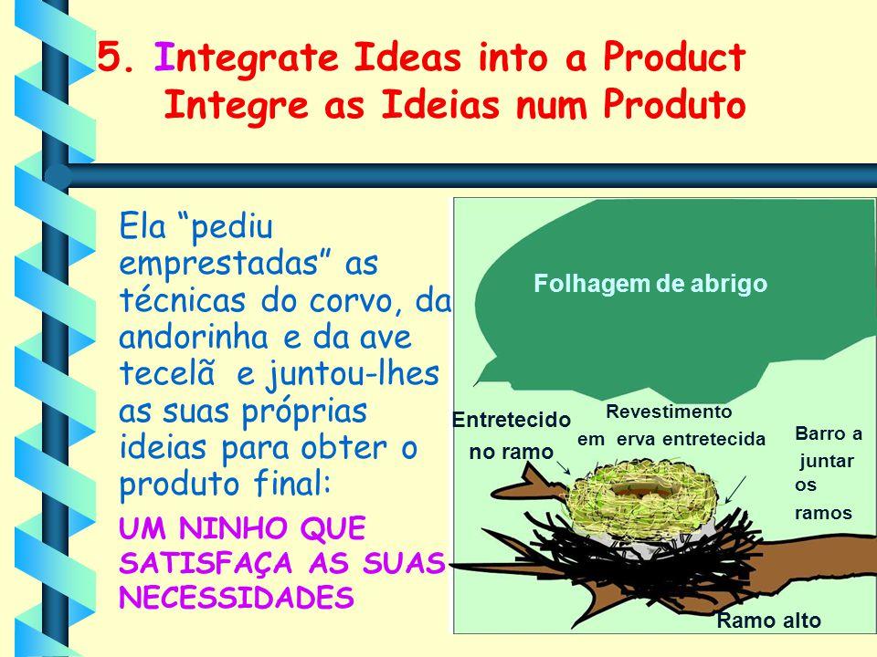 """5. Integrate Ideas into a Product Integre as Ideias num Produto Ela """"pediu emprestadas"""" as técnicas do corvo, da andorinha e da ave tecelã e juntou-lh"""