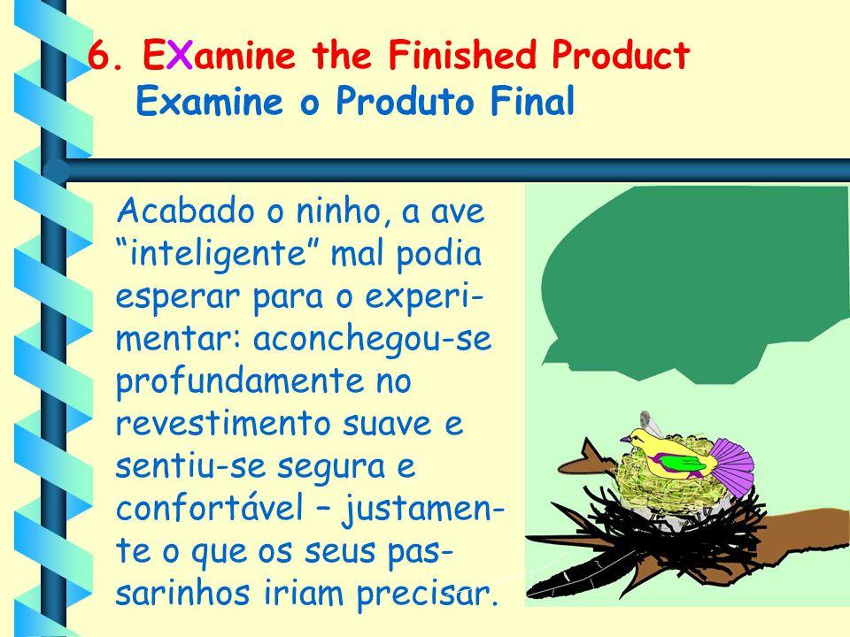 """6. EXamine the Finished Product Examine o Produto Final Acabado o ninho, a ave """"inteligente"""" mal podia esperar para o experi- mentar: aconchegou-se pr"""
