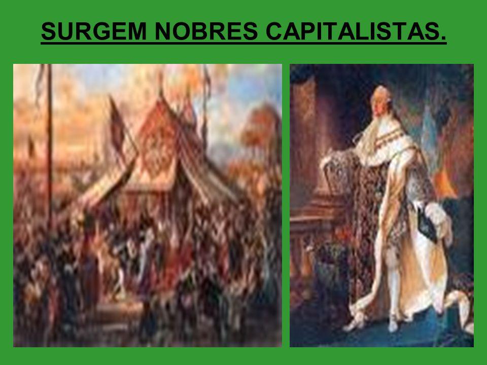 SURGEM NOBRES CAPITALISTAS.
