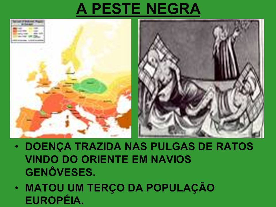 A PESTE NEGRA •DOENÇA TRAZIDA NAS PULGAS DE RATOS VINDO DO ORIENTE EM NAVIOS GENÔVESES. •MATOU UM TERÇO DA POPULAÇÃO EUROPÉIA.