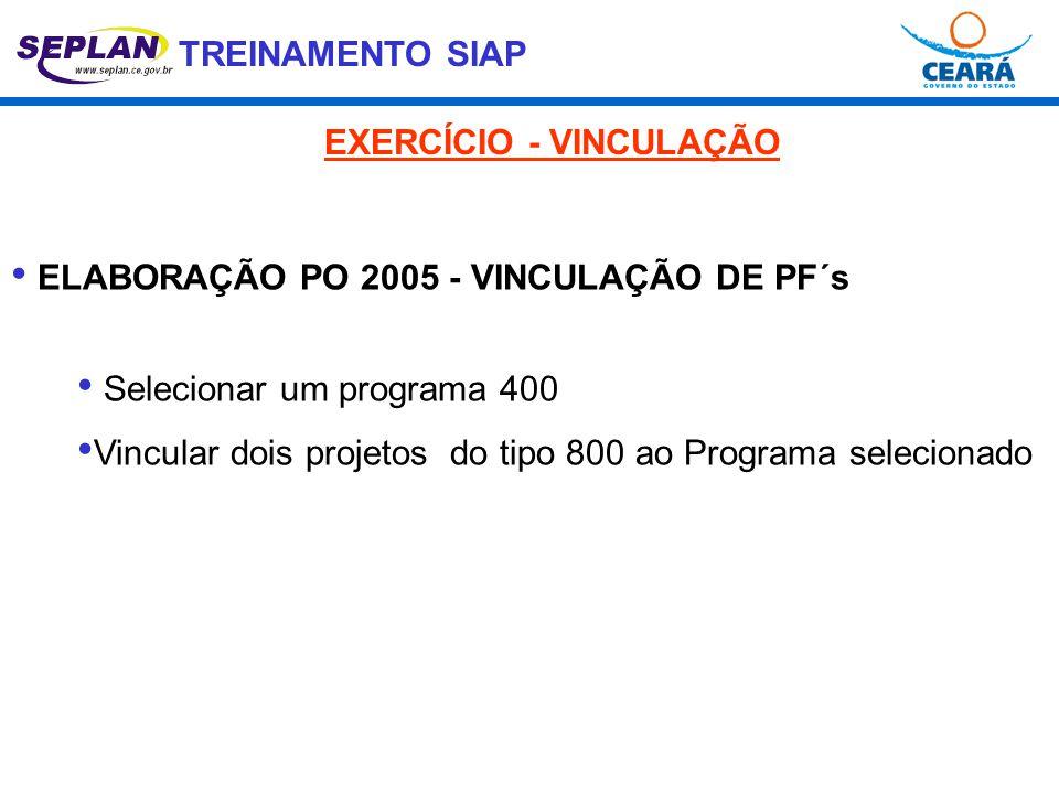 TREINAMENTO SIAP • ELABORAÇÃO PO 2005 - VINCULAÇÃO DE PF´s • Selecionar um programa 400 • Vincular dois projetos do tipo 800 ao Programa selecionado E