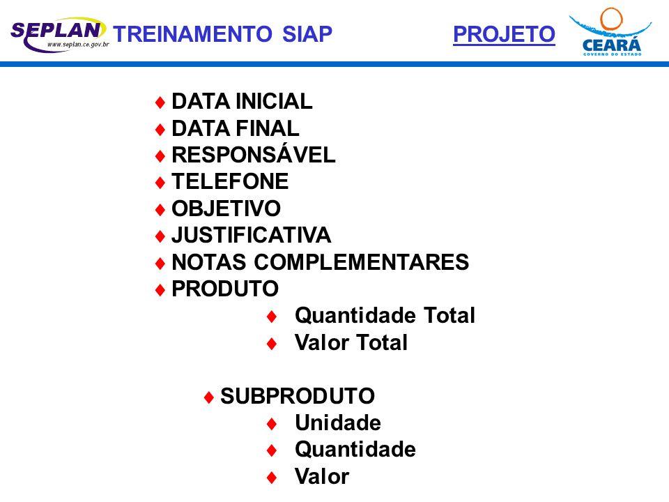 TREINAMENTO SIAP  DATA INICIAL  DATA FINAL  RESPONSÁVEL  TELEFONE  OBJETIVO  JUSTIFICATIVA  NOTAS COMPLEMENTARES  PRODUTO  Quantidade Total 
