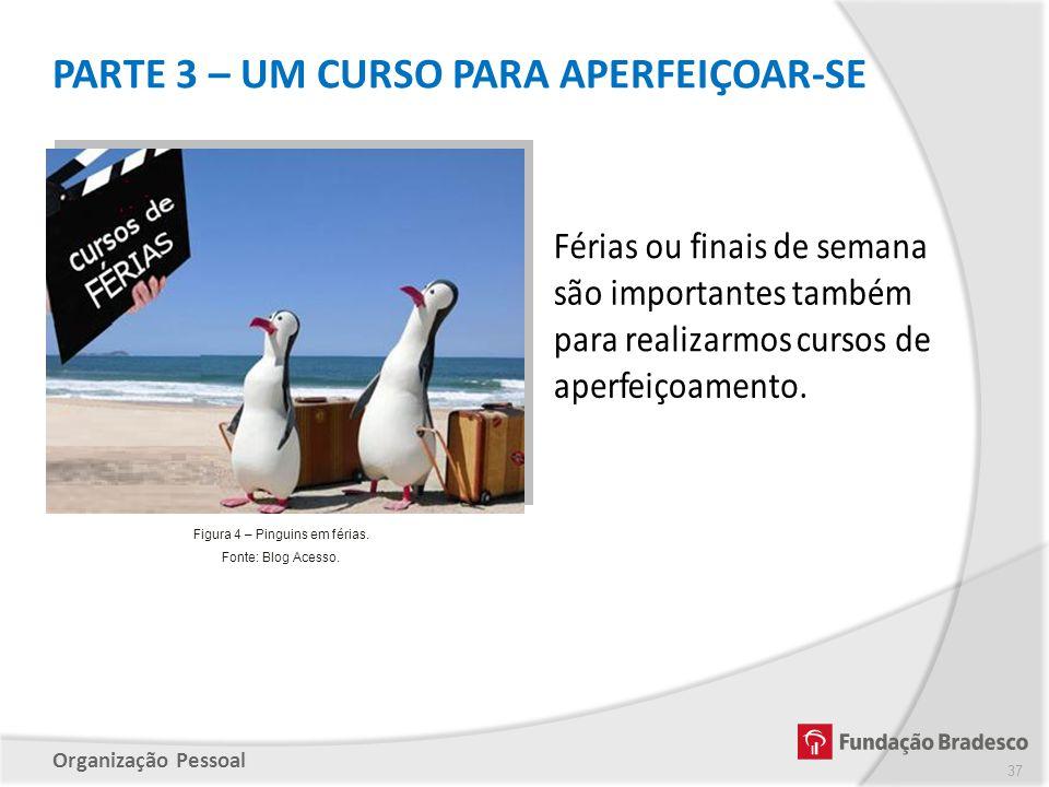 Organização Pessoal PARTE 3 – UM CURSO PARA APERFEIÇOAR-SE 37 Figura 4 – Pinguins em férias. Fonte: Blog Acesso.